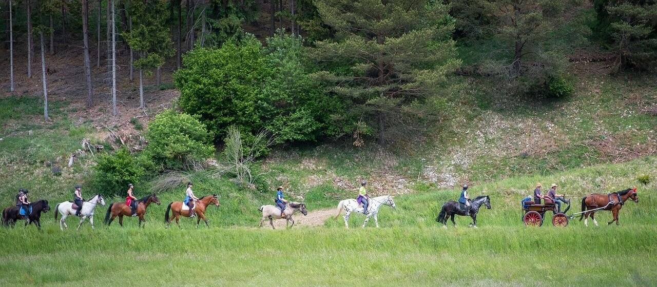 Pferdekutschenfahrten in Grainau